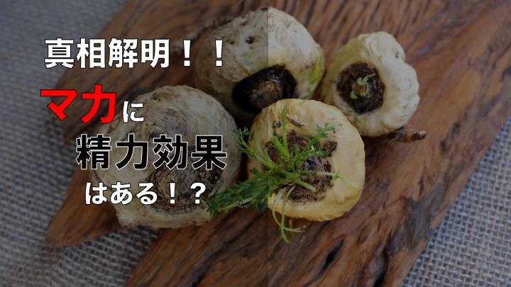 マカ精力 サムネ